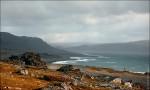 Общественные обсуждения по созданию природного парка «Полуострова Рыбачий и Средний»