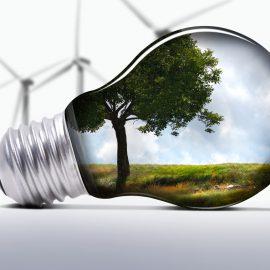 Уроки энергосбережения прошли в школах Мурманска