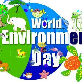 Сохраним природу вместе!